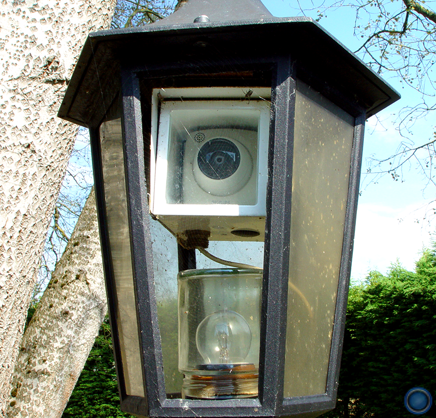 Backyard lantern cam close-up
